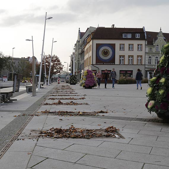 Na zimę Plac Wolności bez wystawy