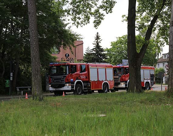Palił się las - z ogniem walczyły dwa zastępy strażaków