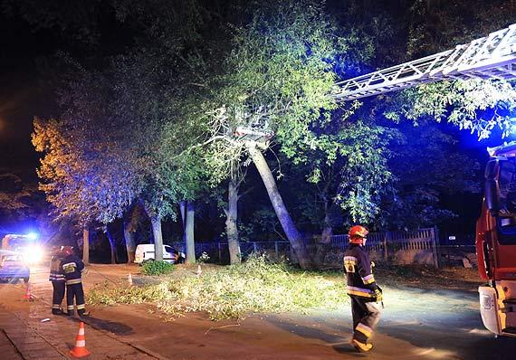 Strażacy usunęli nisko zwisające gałęzie