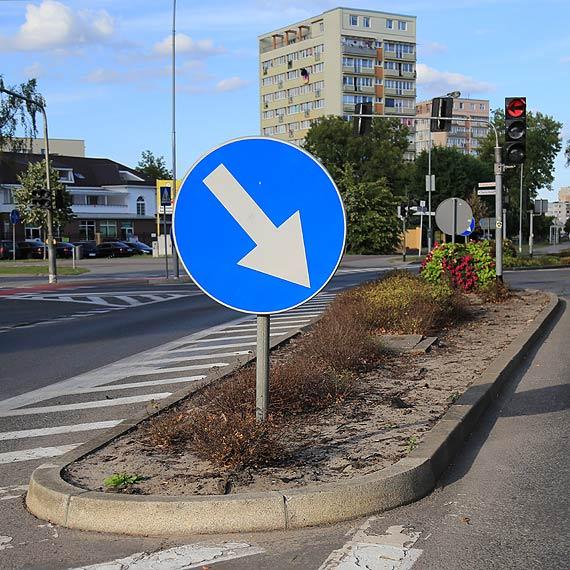 Czytelnik: Kto tak zaniedbał miejską zieleń?