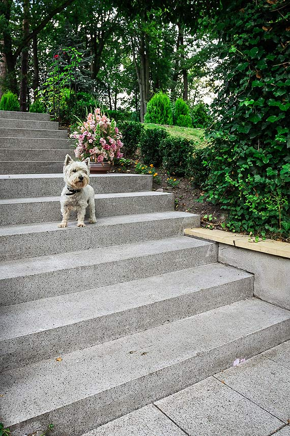 5 ważnych rad przy budowie schodów zewnętrznych