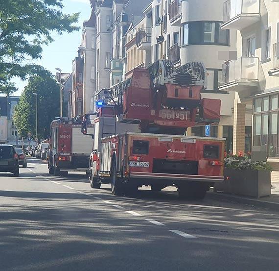 Strażacy uwolnili kota zaklinowanego między barierkami balkonu