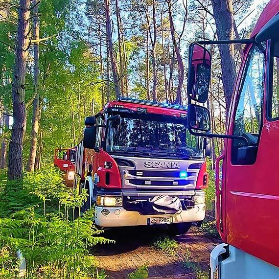 Mamy więcej informacji na temat pożaru lasu przy ulicy Krzywej. Z żywiołem walczył samolot gaśniczy z Goleniowa