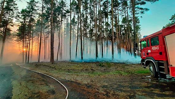 Zagrożenie pożarowe na terenie RDLP Szczecin